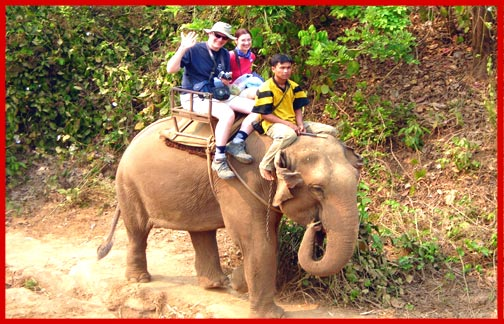 Trekking - Chiangmai Thailand - Elephant Pictures, Chang Thailand, Trekking tours - Elephant Camp