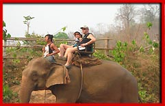 Chang Thailand - Chiangmai Thailand - Elephant tours - hill country elephant trekking