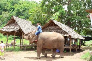 Riding Bare Back on a Thai Elephant