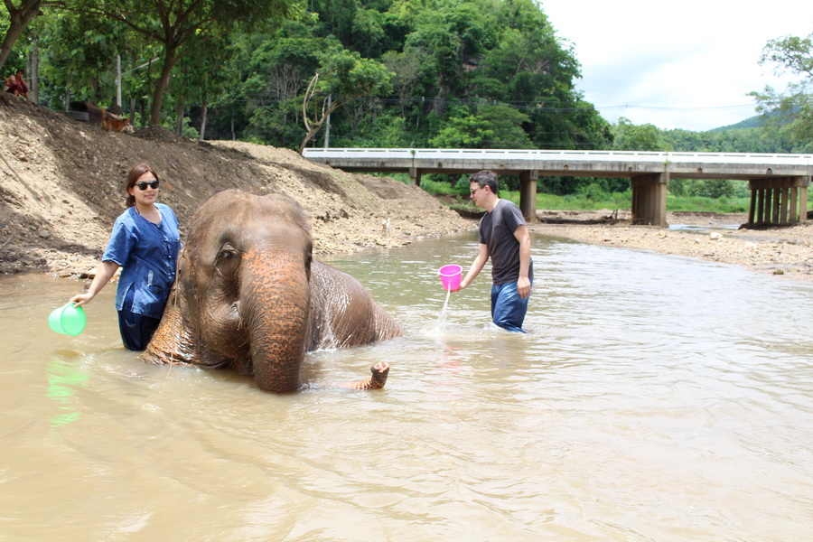 Bath time during a Mahout for a day tour