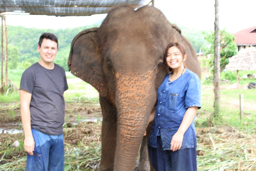 Our guests enjoying an Elephant Care Giving Class
